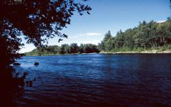 Durham River Park - River_104_thumb