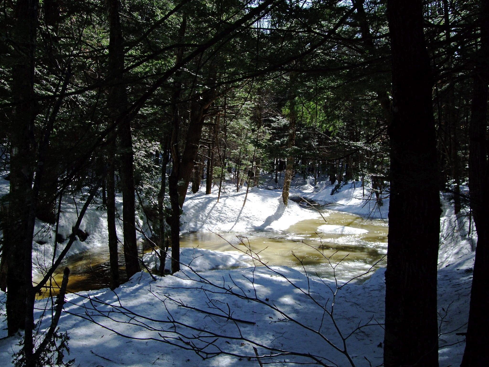 purinton homestead conservation area bowdoin